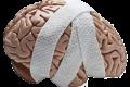 Herstel Van Het Brein